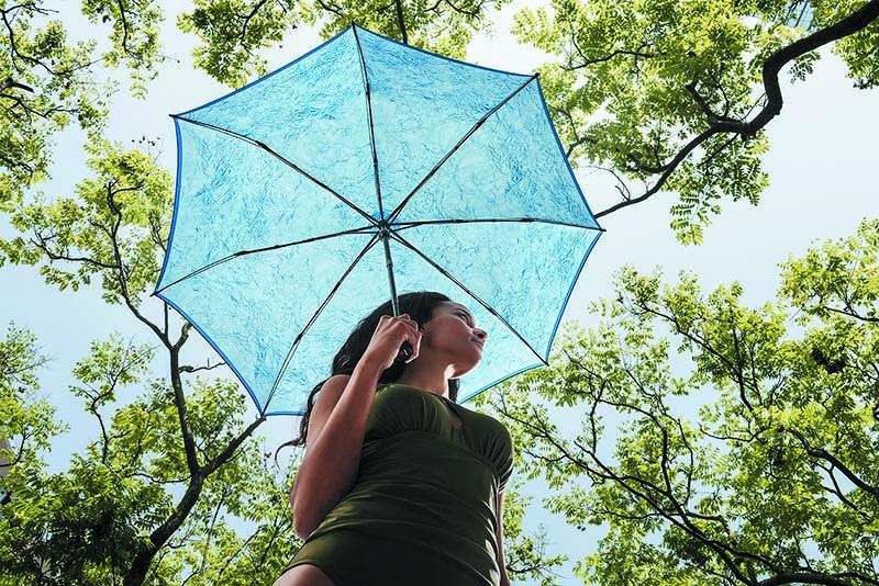 Paraguas online